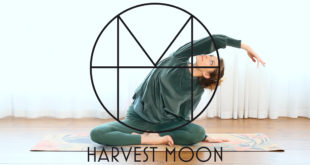 Harvest Moon empowering Stockholm women on the go yoga fashion soft business